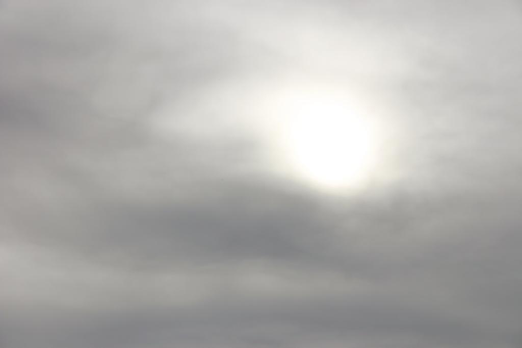 niwelinska-grey-sun-16.png