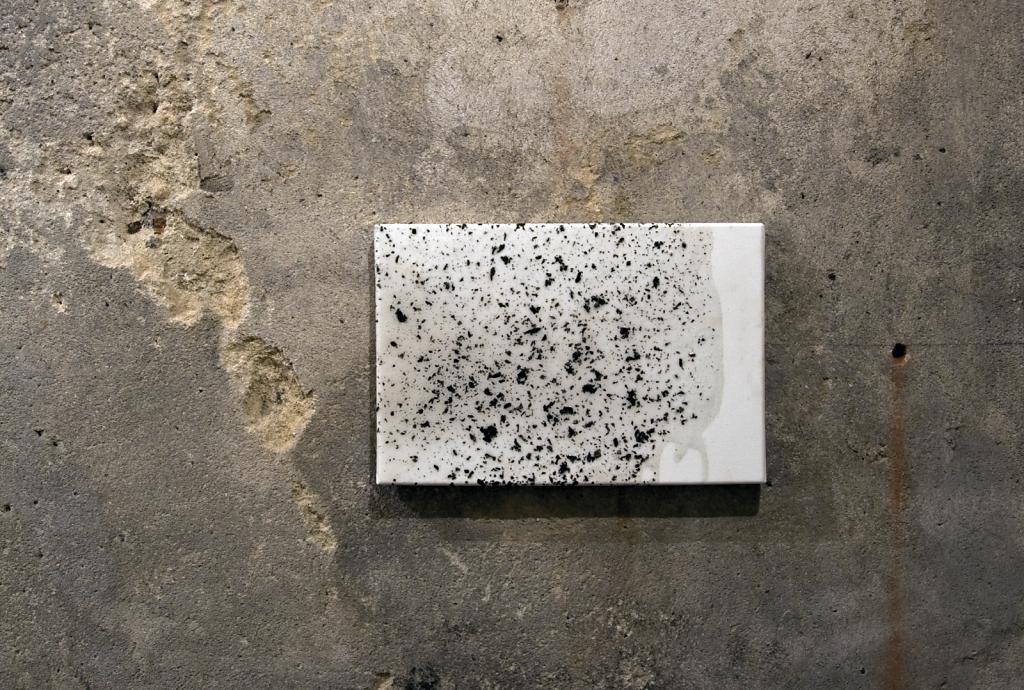 Niwelinskacom-installation-cellar-2013-cello-7aa.png