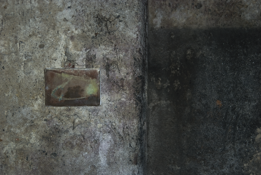 Niwelinskacom-installation-cellar-2013-cela-6.png